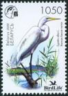 #BEL200813 - Belarus 2008 Birdlife Heron 1v Stamps MNH Bird   0.59 US$ - Click here to view the large size image.