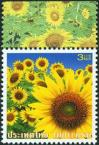 #THA200804 - Sunflower   0.24 US$ - Click here to view the large size image.